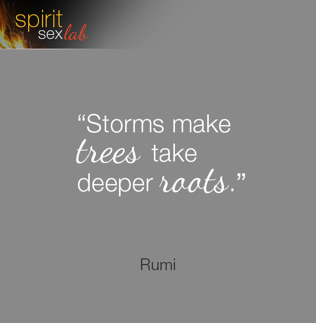 storms make trees take deeper rootes