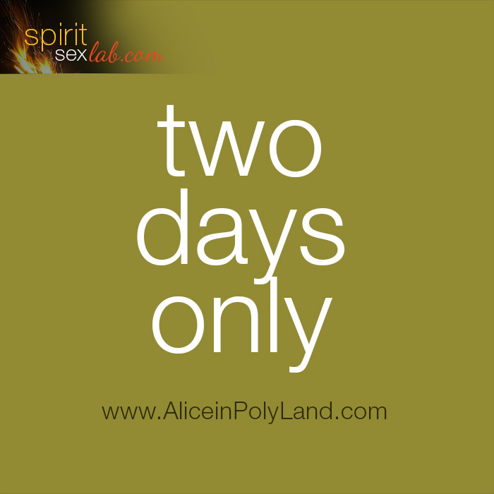 Alice In Polyland two days left